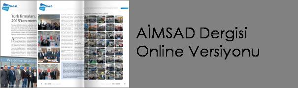 aimsaddergisi-online