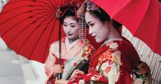 Maiko geishas walking on a street of Gion