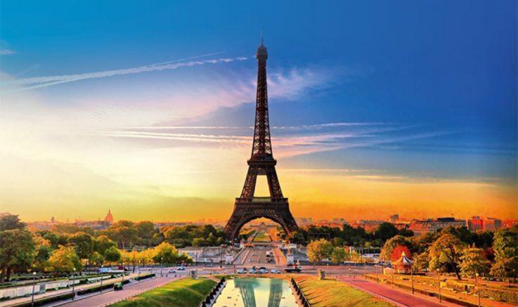 Sektör Fransa'ya ihracatını  3 yılda 4'e katladı